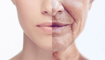 Embrace Aging to Stay Youthful